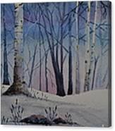 Birch Dawn Canvas Print