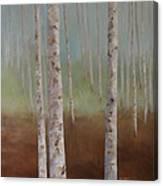 Birch In The Mist Canvas Print