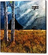 Birch Trees And Biplanes  Canvas Print