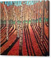 Birch Trees At Dusk Canvas Print