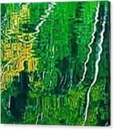 Birch Trees Reflection Canvas Print