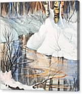 Birch Trio II Canvas Print