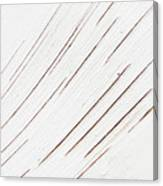 Birching  Canvas Print