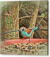 Bird And Feeder Canvas Print