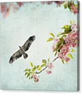 Bird And Pink And Green Flowering Branch On Blue Canvas Print