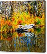 Bird Branch Reflection Canvas Print