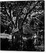 Bird Condominium  Canvas Print