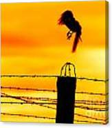 Bird Flying Off From Prison Fence Canvas Print