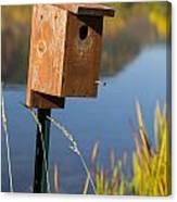 Bird House Autumn 1 Canvas Print