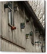 Bird Houses Canvas Print