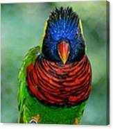 Bird In Your Face  Canvas Print