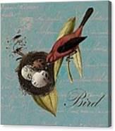 Bird Nest - 02v02t01 Canvas Print