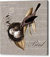 Bird Nest - 02v23c2b Canvas Print