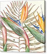 Bird Of Paradise 05 Elena Yakubovich Canvas Print