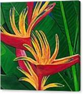 Bird Of Paradise Painting Canvas Print