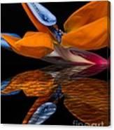 Bird Of Paradise Reflective Pool Canvas Print