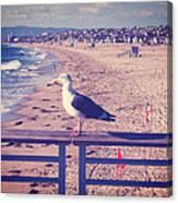 Bird On A Rail Canvas Print