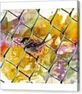 Bird On Chain Canvas Print
