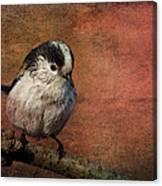 Bird On The Beam Canvas Print