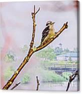 Bird On The Brunch Canvas Print