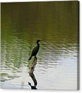 Bird On The Lake Canvas Print