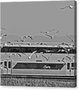 Bird Train Alviso 2 Canvas Print