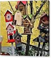 Birdhouse Subdivision Canvas Print