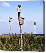 Birdhouses In Salt Marsh. Canvas Print