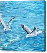 Birds Around Dock Canvas Print