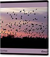 Birds At Sunrise Poster Canvas Print
