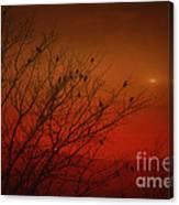 Birds At Sunset Canvas Print
