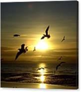 Birds Gathering At Sunset Canvas Print