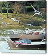 Birds In Flight At The Lake Canvas Print