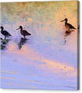Birds In The Camargue Canvas Print