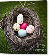 Bird's Nest With Easter Eggs Canvas Print