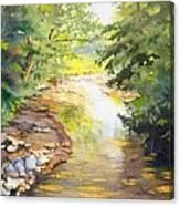 Bird's Trail Creek Canvas Print