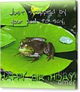 Birthday Greeting Card - Bullfrog On Lily Pad Canvas Print