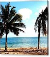 Biscayne Bay Florida Canvas Print