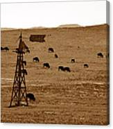 Bison And Windmill Canvas Print