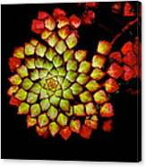 Bits N Pieces Waterlily Canvas Print