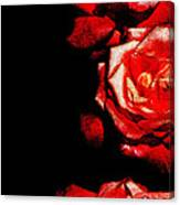 Black And Rose Canvas Print