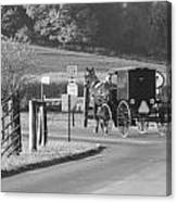 Black And White Amish Horse And Buggy Canvas Print