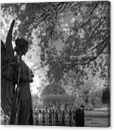 Black And White Angel Canvas Print