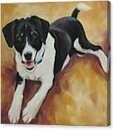 Black And White Dog Canvas Print
