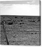 Black And White Fence  Canvas Print