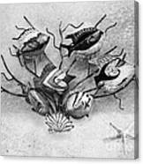 Black And White Fish 1  Canvas Print