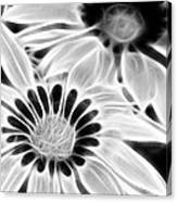Black And White Florals Canvas Print