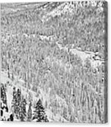Black And White Lake Tahoe California Covered In Snow During The Winter Canvas Print