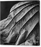Black And White Lotus Leaf Canvas Print