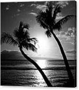 Black And White Tropical Canvas Print